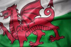 Vinkande färgrik flagga av Wales Royaltyfri Bild