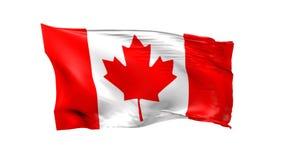 Vinkande flagga av Kanada på vit vektor illustrationer