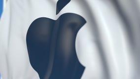 Vinkande flagga med den Apple Inc logoen, närbild Redaktörs- loopable animering 3D stock video
