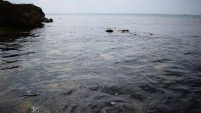 Vinkande hav stock video