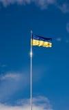 Vinkande ukrainsk flagga Fotografering för Bildbyråer