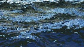vinkar den loopable CG animeringen för 4K av havet under resningsolen kretsad rörelsedesign av vattenrörelse vektor illustrationer