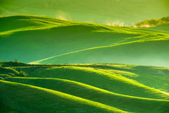 Vinkar kullar, Rolling Hills, minimalistic landskap Royaltyfri Bild