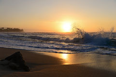 Vinkar på solnedgången Royaltyfri Fotografi