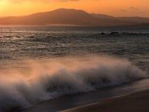 Vinkar på solnedgången arkivfoton