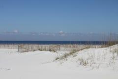 Vinkar på strand Arkivfoto