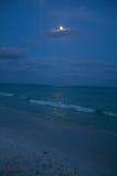 Vinkar på strand Royaltyfri Foto