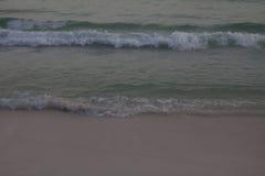 Vinkar på strand Royaltyfri Fotografi