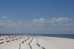 Vinkar på strand Royaltyfri Bild