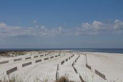 Vinkar på strand Royaltyfria Bilder