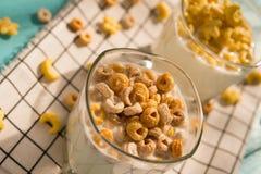 Vinkelsikten två koppar av mjölkar med sädes- cirklar i en solig morgon Arkivbild