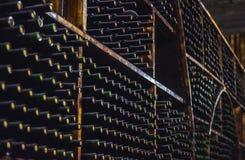 Vinlagring i källaren Amerika: Royaltyfri Bild