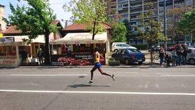 VinnareBelgrade maraton royaltyfri bild