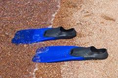 Vinnen op het strand Stock Foto's