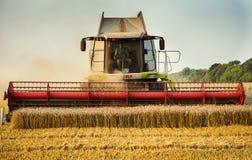 Vinnitsa, de Oekraïne - Juli 27.2016 Korrel het oogsten combineert, de Zomer L Stock Fotografie