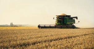 Vinnitsa, Ucrania - julio 27,2016 Grano que cosecha la cosechadora, verano L Fotos de archivo libres de regalías