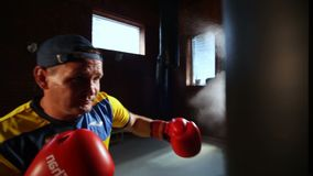 Man in boxing stance training. The future of Ukrainian boxing. Training of boxers. stock video