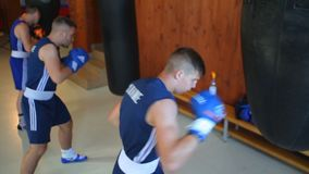 Team of boxers from Ukraine. The future of Ukrainian boxing. Training of boxers. stock video