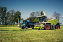 Vinnitsa/Ukraine - 05/04/2018: Forage Harvester selects freshly cut anchored alfalfa.  Stock Photos