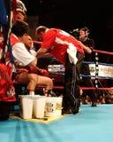 Vinny Paz v Tocker Pudwell 50ste Overwinning Royalty-vrije Stock Foto