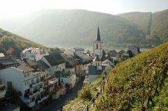 Vino-aldea con un viñedo Fotografía de archivo libre de regalías