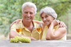 Vino bevente delle coppie anziane Immagini Stock Libere da Diritti