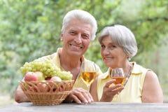 Vino bevente delle coppie anziane Fotografia Stock Libera da Diritti