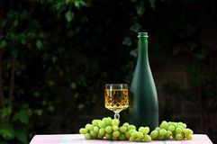 Vino bianco Immagine Stock Libera da Diritti