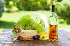 Vino bianco ed uva immagini stock libere da diritti