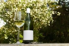 Vino bianco in giardino Fotografia Stock