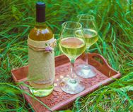Vino bianco nei vetri di vino e della bottiglia sul vassoio di legno a Immagini Stock