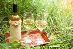 Vino bianco nei vetri di vino e della bottiglia sul vassoio di legno a Immagini Stock Libere da Diritti
