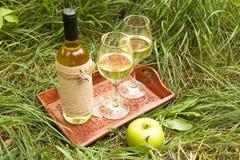 Vino bianco nei vetri di vino e della bottiglia sul vassoio di legno a Fotografia Stock