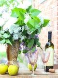 Vino bianco raffreddato Immagini Stock Libere da Diritti