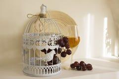 Vino blanco con la uva roja Imágenes de archivo libres de regalías