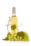 Vino blanco con la vid de uva Fotografía de archivo libre de regalías