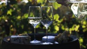 Vino blanco de colada del Winemaker en los vidrios almacen de metraje de vídeo