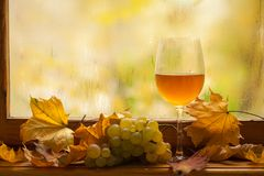 Vino blanco del otoño Foto de archivo libre de regalías