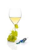 Vino blanco lujoso. Fotografía de archivo libre de regalías