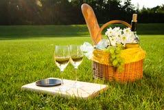 Vino blanco y comida campestre en la hierba Fotografía de archivo libre de regalías
