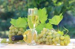 Vino blanco y composición de las uvas Foto de archivo libre de regalías