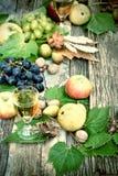 Vino blanco y frutas otoñales Imagen de archivo libre de regalías