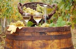 Vino blanco y uva en barril Fotografía de archivo