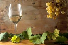 Vino blanco y uvas Imagen de archivo libre de regalías