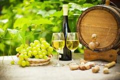 Vino blanco y uvas imagen de archivo