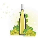 Vino, bottiglia del champagne con l'uva illustrazione vettoriale