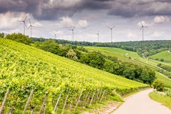 Vino crescente ed energia eolico in Franconia Fotografia Stock