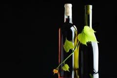 Vino de dos botellas trenzado por la vid Fotografía de archivo
