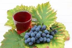Vino de fruta con las uvas frescas Imagen de archivo