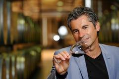 Vino de la prueba del hombre en un sótano-Winemaker Imágenes de archivo libres de regalías